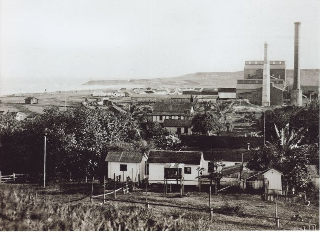 Kealia Mill and Village c. 1909
